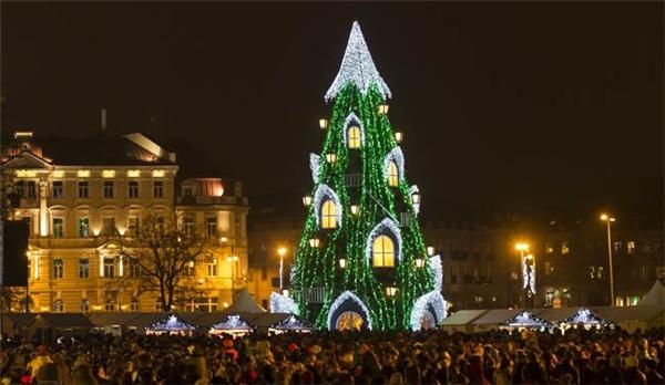 Đây là cây thông khổng lồ hay một lâu đài xanh rì?