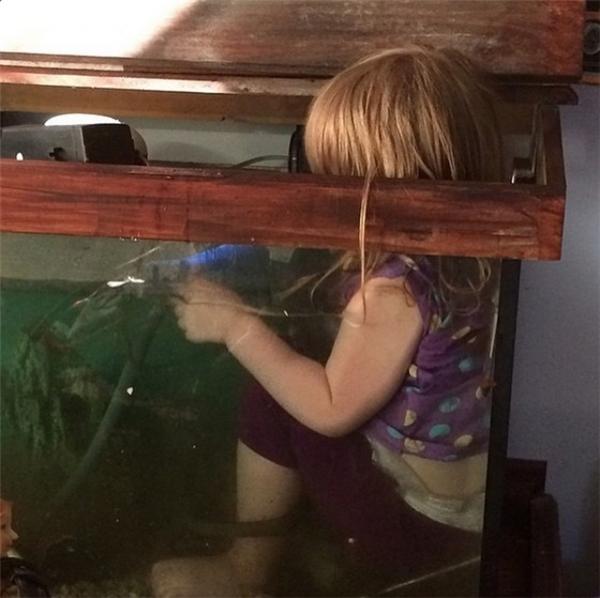 Con cũng muốn làm con cá.