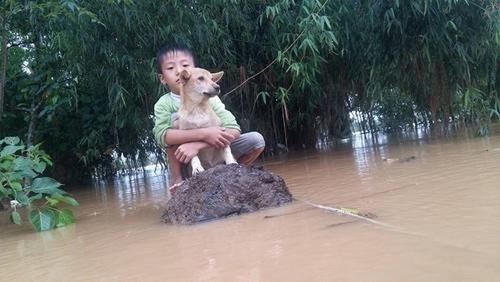 Giữa dòng nước cuốn, cậu bé đã ôm cứng để bảo vệ người bạn bốn chân. Tuy nhiên khi nước lên quá cao, em không thể nào bơi vào bờ được nữa. Hình ảnh chụp giữa trận lũ lụt miền Trung khiến nhiều người xót xa.