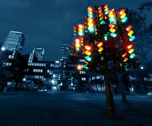 Cây thông từ đèn giao thông.