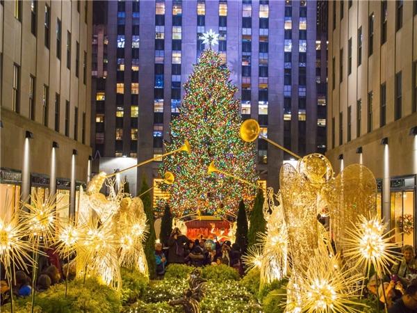 Đây là mộttrong những cây thông Noel nổi tiếng nhất thế giới nằm tại trung tâm Rockefeller. Được trang hoàngvới hơn 50.000 chiếc đèn LED, cây thông cao 28m sẽ là tâm điểm của Giáng Sinh năm nay. Được biết, cây thông cao lớn nàyđược lấy từ thành phố Oneonta, phía nam hạt Otsego thuộc bang New York.