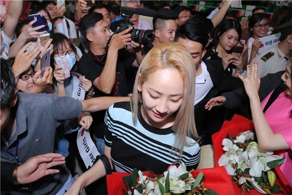 Wonder Girls, Micheal Learn To Rock rạng rỡ chào fans khi đến Việt Nam