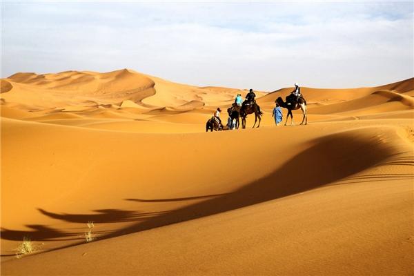 Sa mạc Sahara là sa mạc lớn nhất thế giới. (Ảnh: internet)