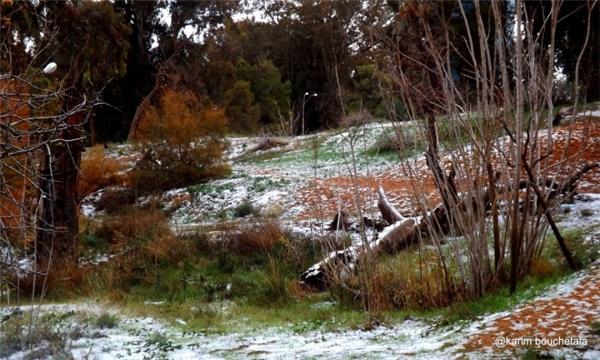 Hiện tượng tuyết rơi ở sa mạc thực chất vẫn thường xảy ra ở vùng đồi núi gần những sa mạc cát lớn. (Ảnh: internet)
