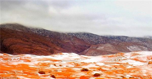 Tuyết rơi trắng trên nền cát màu đỏ tạo nên một khung cảnh tuyệt đẹp. (Ảnh: internet)