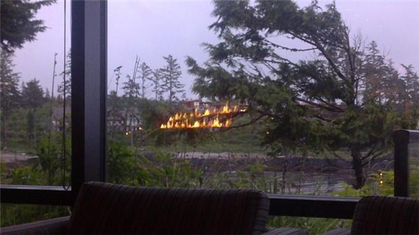 """Hai cành cây """"đang cháy"""" thế này liệu có gây ra nguy cơ cháy lớn không nhỉ? Chụp hình lại trước đã."""
