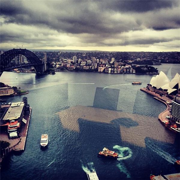 Hóa ra trong lòng Cảng Sydney có cả một phòng họp khổng lồ với đầy đủ bàn ghế và màn hình đấy nhé.