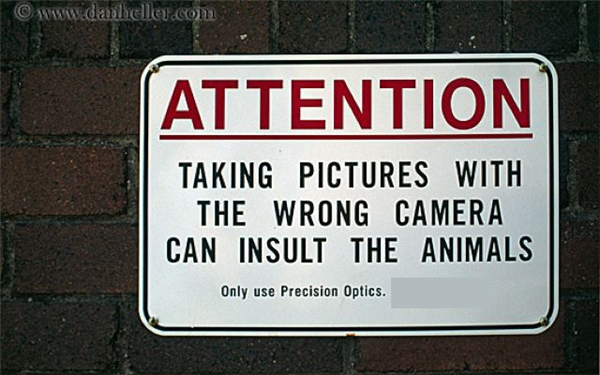 Cảnh báo: Chụp ảnh bằng máy ảnh tào lao có thể khiến động vật cảm thấy bịxúc phạm.