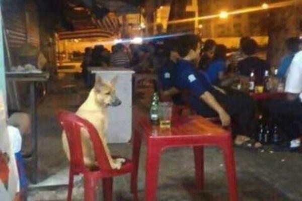 """""""Các chú đừng nhìn nữa. Chưa bao giờ thấy người ta uống bia một mình à?"""".(Ảnh: Internet)"""