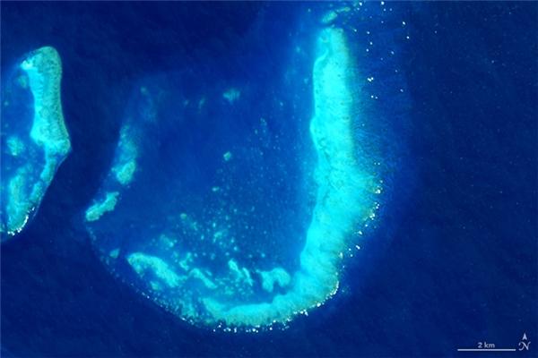 Chữ J: Rặng san hô Trunk Reef, nằm gần Townsville, Australia
