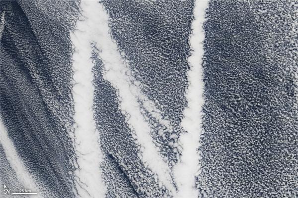 Chữ N:Đường đi của những con thuyền trên Đại Tây Dương