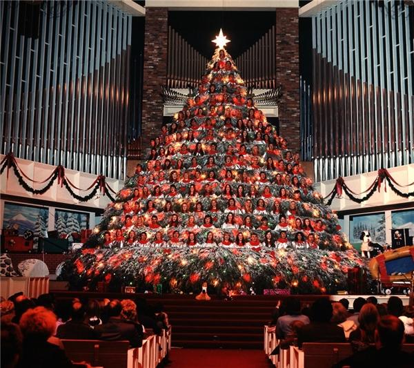 Môt dàn đồng ca tạo thành hình cây thông khổng lồ vào năm 1971. (Ảnh:Ralph Crane)