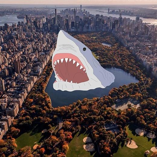Cá mập khổng lồ giữa lòng thành phố kìa!