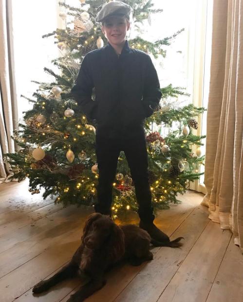 Cruz Beckham chụp ảnh với cây thông Noel và chú cún cưng của mình.