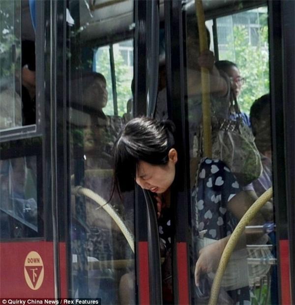 Từ nay đi xe buýt cũng phải đội mũ bảo hiểm vào.