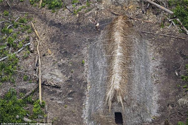 Rừng nhiệt đới Amazon ở Brazil, giáp ranh với Peru, Bolivia và Colombia được cho là nơi sinh sống của 100 bộ tộc sống cô lập với thế giới.