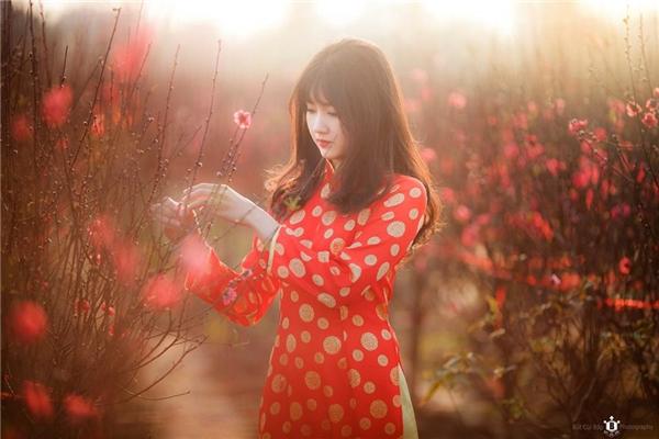 Kiều Trinhxinh đẹp, rạng rỡ trong tà áo dài tại vườn đào những ngày đầu xuân.