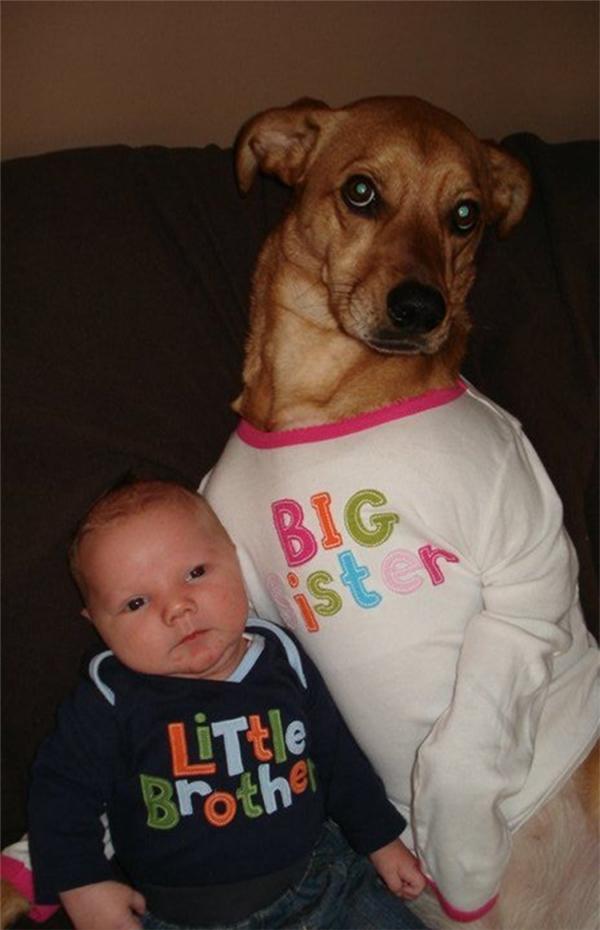 Nhà có con nít thì có gì vui thế?