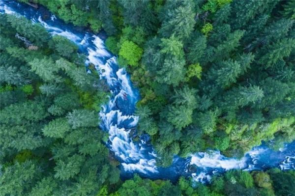 Bỏ qua dòng nước chảy xiếc và những rặng cây xanh biếc dưới kia, bức ảnh được thực hiện tại hẻm núi sông Columbia nhắm vào 2 chiếc thuyền kayak đang vật lộn giữa cơn sóng dữ. Nhiếp ảnh gia Karim Iliyacho biết tác phẩm này đòi hỏi kế hoạch mỉ mỉ cùng sự phối hợp nhịp nhàng từ người lái thuyền.