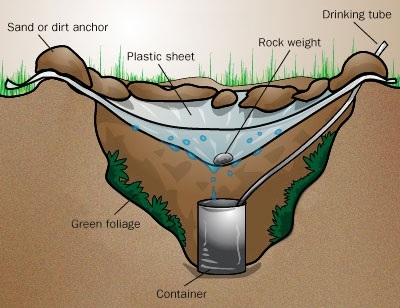 Với một chiếc túi nilon, bạn hoàn toàn có thể có nước sạch thông qua cơ chế lọc nước được minh họa theo hình vẽ này.