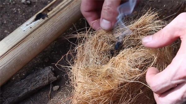 Bạn cũng nên cố gắng thử học cách sử dụng tạo lửa từ các đồ vật có sẵn trong tự nhiên.