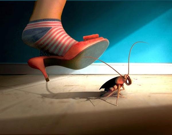 Hãy bỏ ngay thói quen đập gián trong nhà nếu không muốn rước họa vào thân. (Ảnh: Internet)