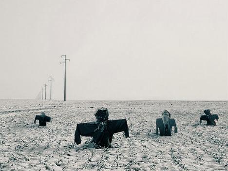 Cánh đồng bù nhìn vào mùa đông.