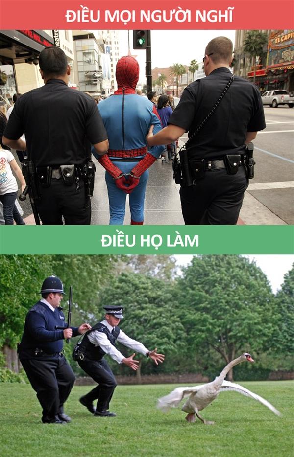 Đâu phải lúc nào cũng có trộm để bắt.