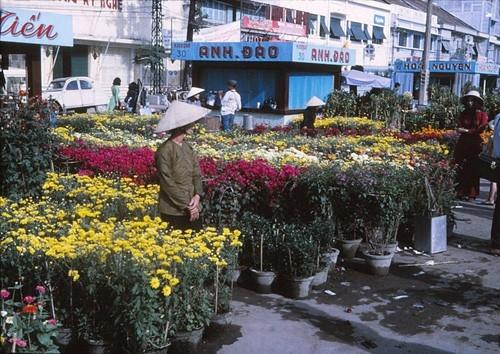Chợ hoa xuân đủ sắc màu.