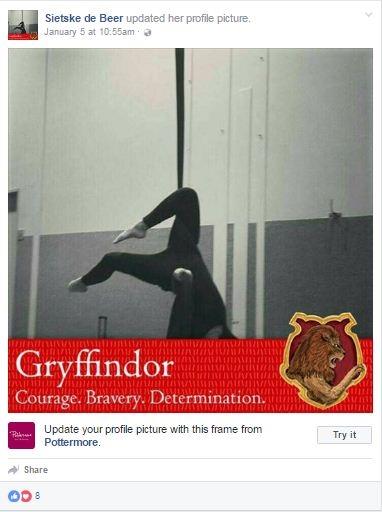 Giới trẻ Việt rần rần bắt chước Harry Potter phân loại nhà Hogwarts