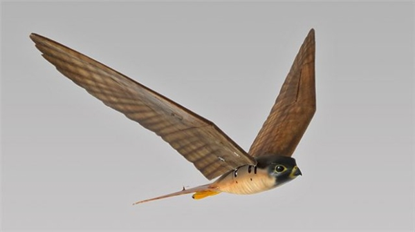 Xuất phát từ thưc tế tại nhiều sân bay cả dân sự và quân sự trên thế giới, đặc biệt là Hoa Kỳ đang bị đe dọa bởi các đàn chim tự nhiên trong khi đó việc sử dụng chim ưng để đuổi nhưng đàn chim đó cũng gặp khá nhiều hạn chế do việc huấn luyện không hề dễ dàng.