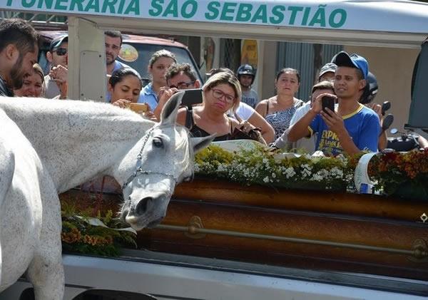 Chẳng ai yêu cầu, chú ngựa vẫn tự mình tiến đến gần và tựa đầu vào quan tài người chủ.