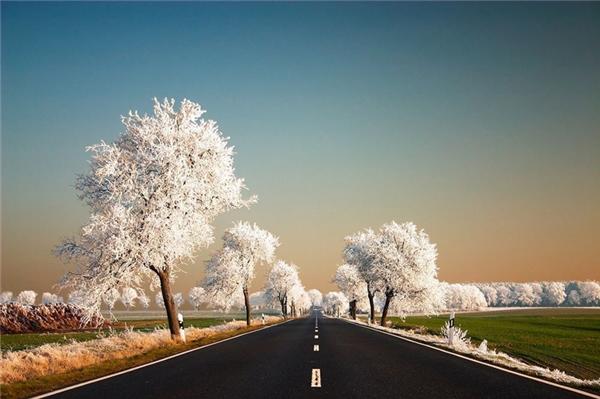 Một con đường mùa đông trắng xóa ở Ba Lan, hay là ai đó đã chỉnh màu quá đà cho bức ảnh này?