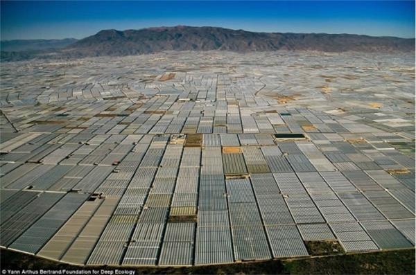 Cả một khu vực rộng lớn ở Almeria, Tây Ban Nha được lấp kín bởi hàng trăm nghìn ngôi nhà kính.