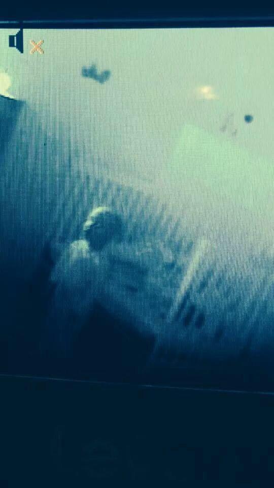 Nghe tiếng con khóc lúc nửa đêm, tôi bật hệ thống quan sát qua camera để xem chuyện gì đã xảy ra với con bé. Và đây là những gì tôi nhìnthấy.