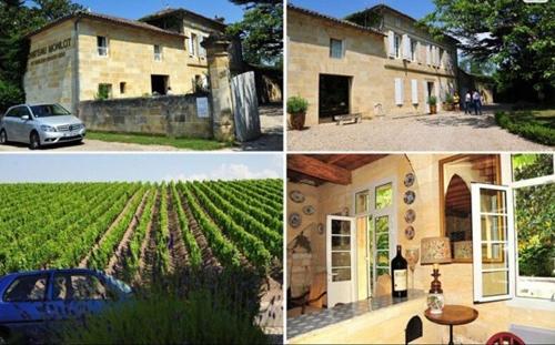 Nữ diễn viên còn sở hữu trang trại sản xuất rượu nho tại Pháp.