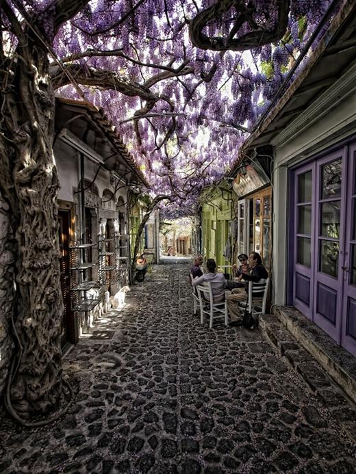 Lạc lối trước 10 con đường hoa đẹp như chốn thần tiên