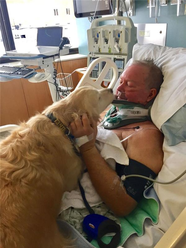 Bob bị trượt té gãy cổ giữa trời tuyết lạnh nhưng được cô chó trung thành Kelseyủ ấm suốt 20 tiếng đồng hồ.