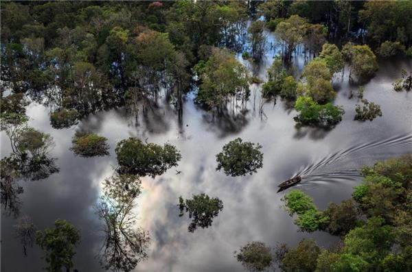 Ảnh trên là phong cảnh của vườn quốc gia Anavilhanas gần sông Amazon ở Brazil. Sự phối hợp hài hòa giữa sông nước vật thảm thực vật phong phú đã tạo nên bức tranh thiên nhiên đầy hữu tình, say đắm.