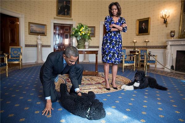 Cặp đôi đùa giỡn với hai chú cún cưngSunny và Bo trong khi chờ đợi khách tại phòng Xanh, Nhà Trắng, 5/11/2013.