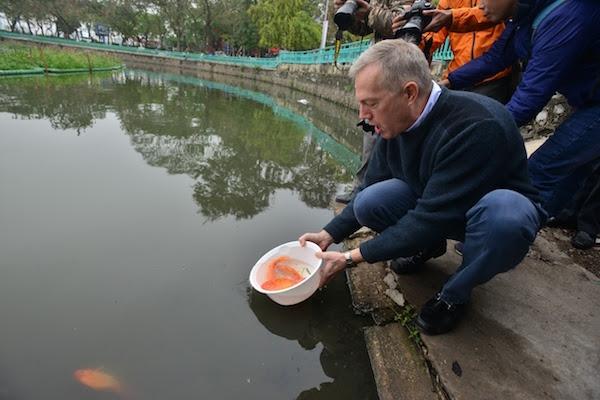 Đây là lần thứ ba ngài đại sứ Mỹ thả cá chép tiễn ông Công ông Táo theo phong tục truyền thống của người Việt.
