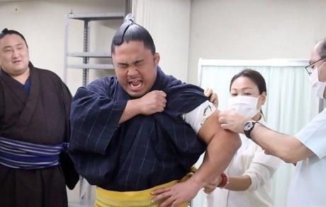 Nỗi sợ tiêm ngừa, đến Sumo Nhật Bản còn sợ huống hồ gì chúng ta