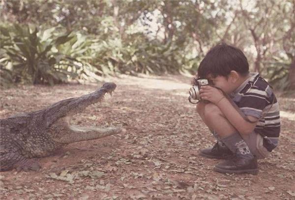"""Nhiếp ảnh gia """"nhí"""" rất dũng cảm để chụp được bức ảnh cá sấu. (Ảnh: internet)"""