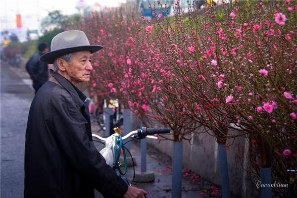 Chợ hoa Quảng Bá.