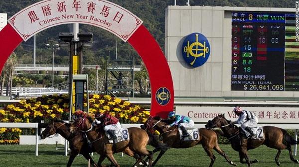 Trường đua Sha Tin (Hồng Kông).