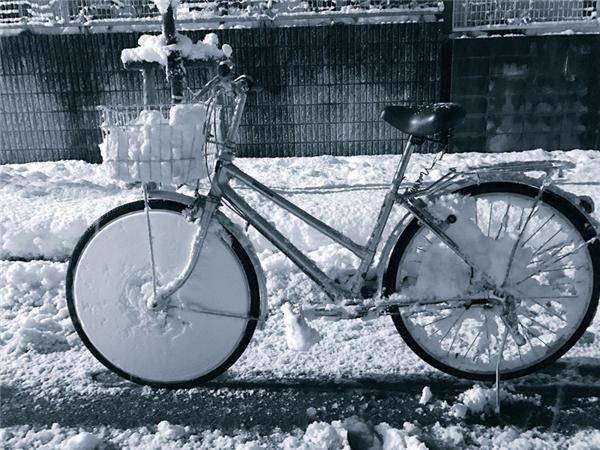 Tuyết ngập đến tận rổ xe luôn đấy.