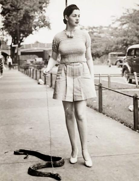 Một cô gái dẫn rắn đidạo phố.