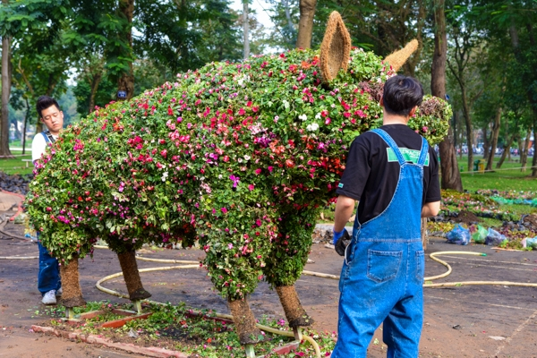 Không chỉ có công nhân người Việt Nam mà còn có cả các chuyên gia cây cảnh đến từ Hàn Quốc cũng đang gấp rút hoàn thiện công việc.