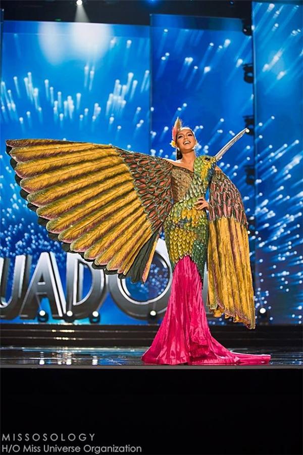 Hoa hậu Ecuador cũng sử dụng hình ảnh chú chim làm cảm hứng cho trang phục truyền thống.