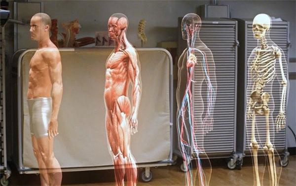 """Nhờ sự ra đời của máy móc mà con người dần trở nên """"nhàn hạ"""" hơn nên phần cơ bắp sẽ giảm đáng kể."""